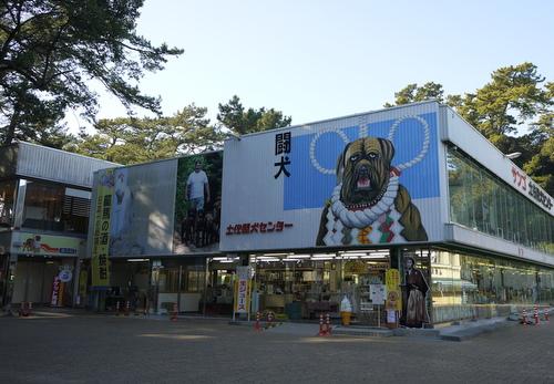 土佐闘犬センター